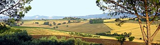 Umbria - A typical landscape of the Umbrian countryside