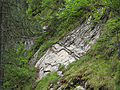 Umgebung der Schraubenfallhöhle ND 9 39 im Tuxertal 12.JPG