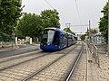 Un tramway à proximité du CHU Montpellier Saint-Eloi (juin 2019).jpg