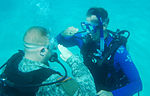 Underwater Pinning DVIDS119944.jpg