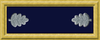 Union Army LTC rank insignia.png