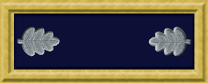 Francisco Perea - Image: Union Army LTC rank insignia