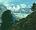 VSAletschwald2.jpg