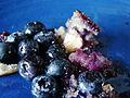 Vegan Blueberry Griddle Cake (5005394954).jpg