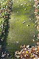 Vegetable text - Dom- und Magnifriedhof - Braunschweig, Germany - DSC04260.JPG