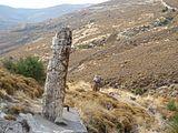 Versteinerter Wald auf Lesbos.JPG