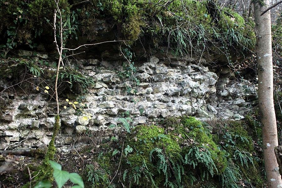Vestiges de l'aqueduc romain d'Arcier à la Malate.