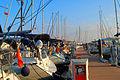 Viaport Marina.jpg