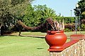 Victoria Falls 2012 05 23 1360 (7421824082).jpg