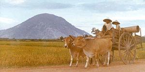 Black Virgin Mountain - Vietnamese cart with Black Virgin Mountain in the background