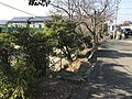 View near Kashii Technical High School.jpg
