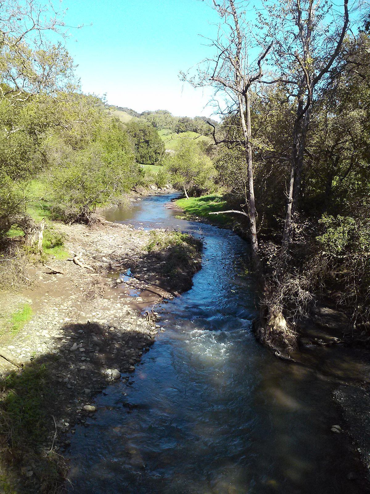 Image result for Llagas Creek Morgan Hill