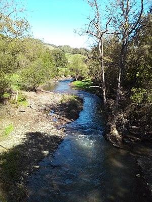 Llagas Creek - Llagas Creek near Oak Glen Avenue, March 2017