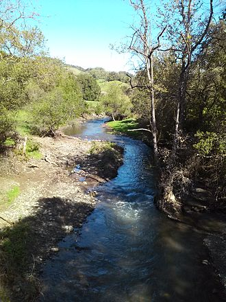 Llagas Creek - Llagas Creek near Oak Glen Avenue, March 2017