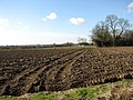 View west across bare field - geograph.org.uk - 706406.jpg