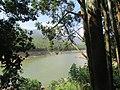 Views around Munnar, Kerala (69).jpg