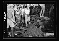 Vintage activities at Richon-le-Zion, Aug. 1939. Close up of stems & seeds, etc. thrown out from crusher by centrifugal force LOC matpc.19780.jpg