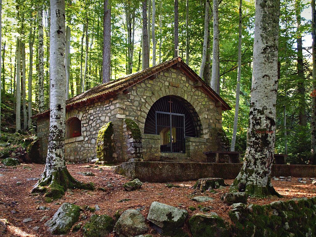 chalet de jardin bois
