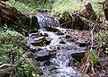 Vodopad 1.jpg