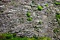 Vrch Rudná (852 m) fylitové skalky (4).jpg