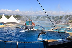 Marineland of Antibes - Global view of the killer whales tanks