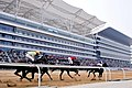 WUHAN OPEN HORSE RACING.jpg
