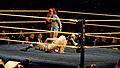 WWE NXT 2015-03-28 00-17-14 ILCE-6000 3932 DxO (16744451474).jpg