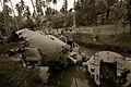 WWII Plane Crash.jpg