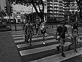 Walk away.. (37936541134).jpg