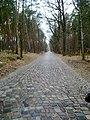 Wanderweg Richtung Summt - panoramio (3).jpg