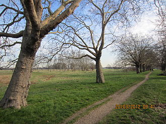 Forest Gate - Wanstead Flats at Forest Gate