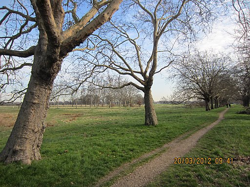 Wanstead Flats at Forest Gate