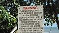 Warning sign about marine stingers, Ellis Beach, 2018.jpg