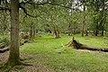 Warwickslade Cutting, original stream bed - geograph.org.uk - 1546511.jpg
