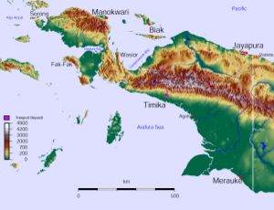 Western New Guinea - The rugged and hilly topography of Western New Guinea.