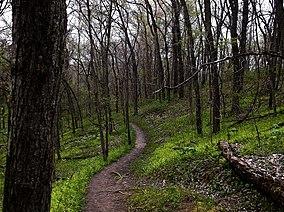 Weston Bend State Park.jpg