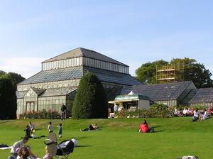 Image of Glasgow Botanic Gardens: http://dbpedia.org/resource/Glasgow_Botanic_Gardens