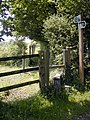 Where the North Downs Way rejoins the road - geograph.org.uk - 463684.jpg
