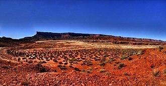 White Rim Sandstone - Image: White Rim Road