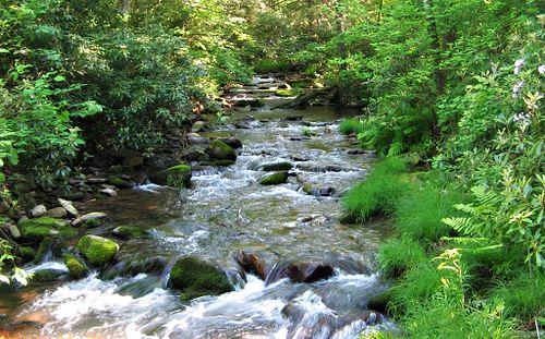 White Deer Hole Creek near 4th Gap crop.jpg