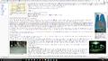 Wikipedia screenshot showing 100% render size.png