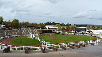Cheltenham Festival - Winners' enclosure at Cheltenham Racecourse.