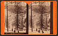 Winter at Horse-shoe Bend, on the Penna. R. R, by R. A. Bonine 4.jpg