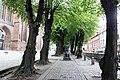 Wismar, an der Nikolaikirche, Allee mit Denkmal in der Mitte.JPG
