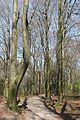 Wuppertal Ronsdorfer Anlagen 2015 041.jpg