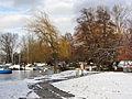 Zürichhorn 2011-12-19 12-53-32 (SX230).JPG