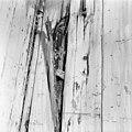 Zwam op houtconstructie - Delft - 20049220 - RCE.jpg