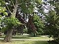 Zwolle Park Eekhout.jpg