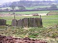 'Wall' adjoining the Magna Via on Beacon Hill - geograph.org.uk - 1216196.jpg