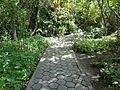 (Jardín Botánico de Quito) pic bb8a7.JPG